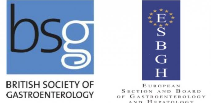 BSG ESBGH logos